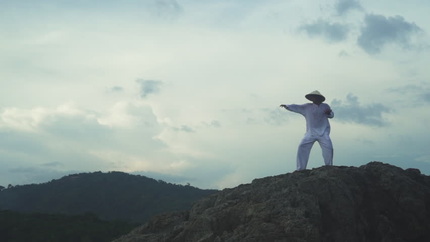 Kung fu fighter silhouette, young man doing an exercise of fighting sport | Shutterstock HD Video #22481497