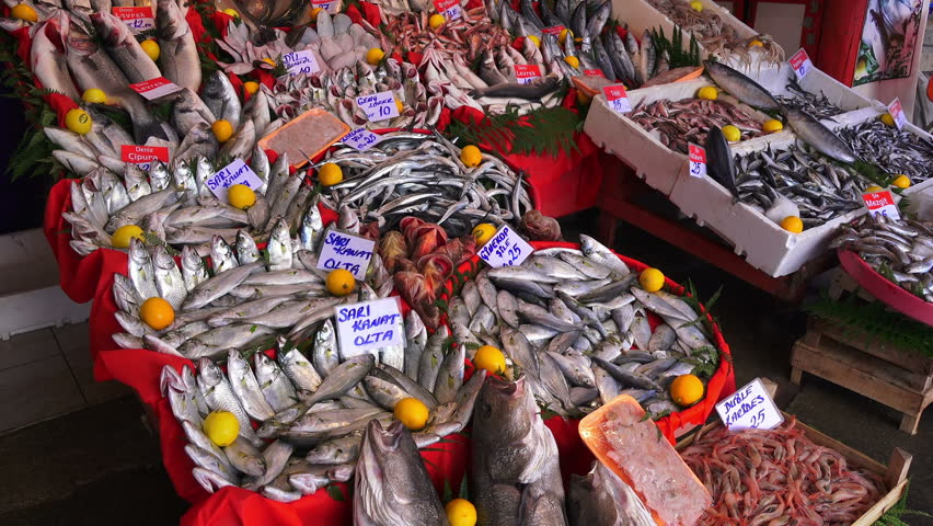Fresh fish in the market, Istanbul, on December 17, 2016 | Shutterstock HD Video #22580989