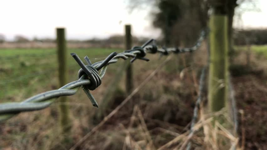 Barbed wire fence in British winter countryside