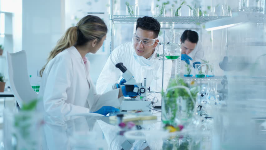 4K Research scientists studying plant life in lab & discussing their findings Dec 2016-UK