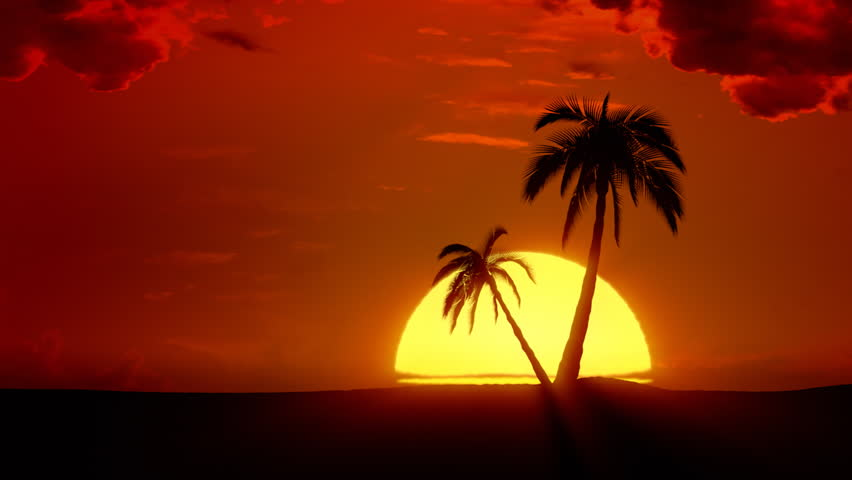 Time-lapse tropical sunrise with palm trees and clouds. VFX composite.