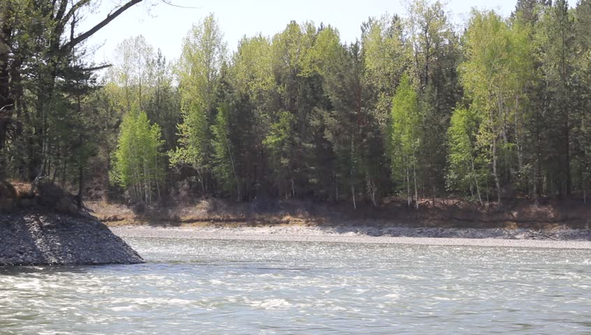 River in forest, Altai, Russia | Shutterstock HD Video #2299082
