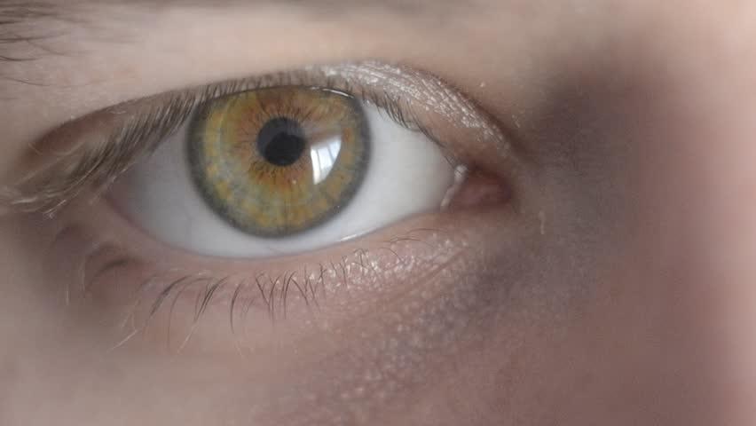 Macro shot eye   Shutterstock HD Video #23131666