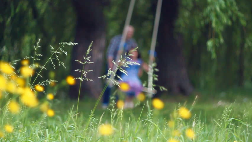 Defocused romantic couple of lovers in field on swing. Romantic time of love and youth | Shutterstock HD Video #2316452