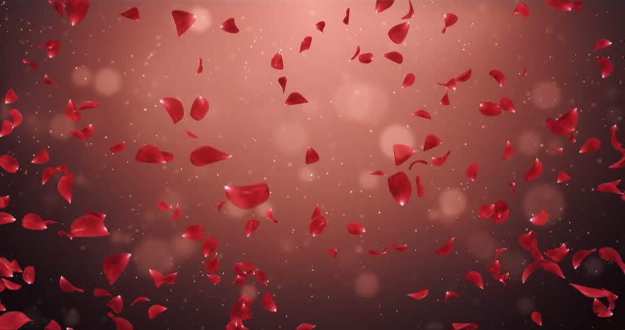 Valentine S Day Cards