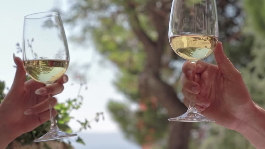 People toast with a glass of white wine. | Shutterstock HD Video #23235955