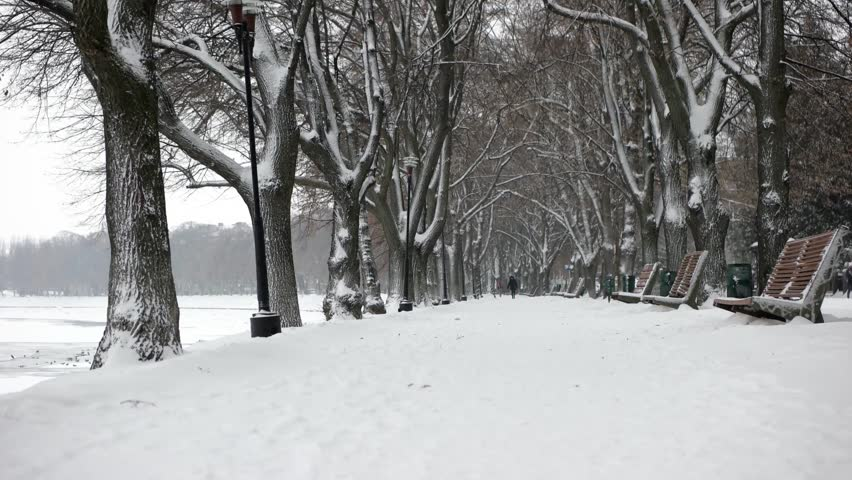 Walking by Snow-Covered Alley, Avenue at the Winter Embankment. Steadicam Pov Shot | Shutterstock HD Video #23239006