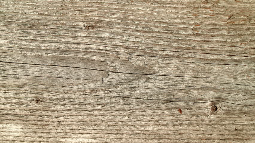 Natural old wood weathered board texture crack lines curves swirls close up background profile | Shutterstock HD Video #23375467