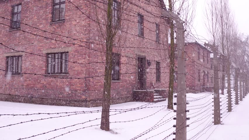 Steadicam walk along old rusty barbed wire fence of Auschwitz Birkenau concentration and extermination camp. Brick barracks in falling snow. 4K clip