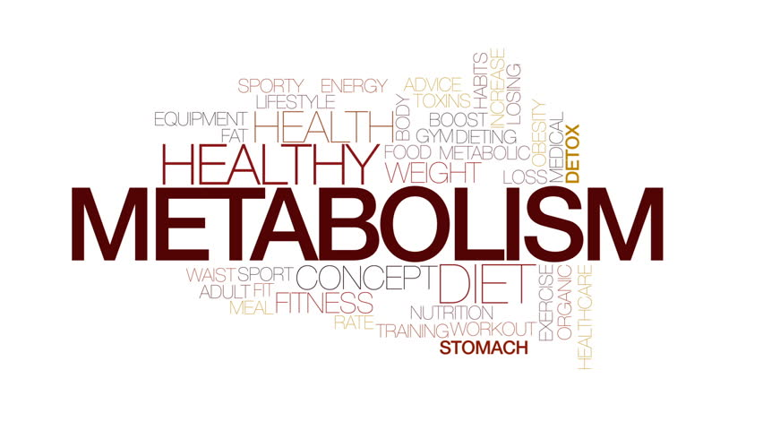Metabolism animated word cloud, text design animation. Kinetic typography.   Shutterstock HD Video #23516383
