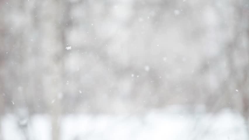 Snow falls and swirls  | Shutterstock HD Video #23543860