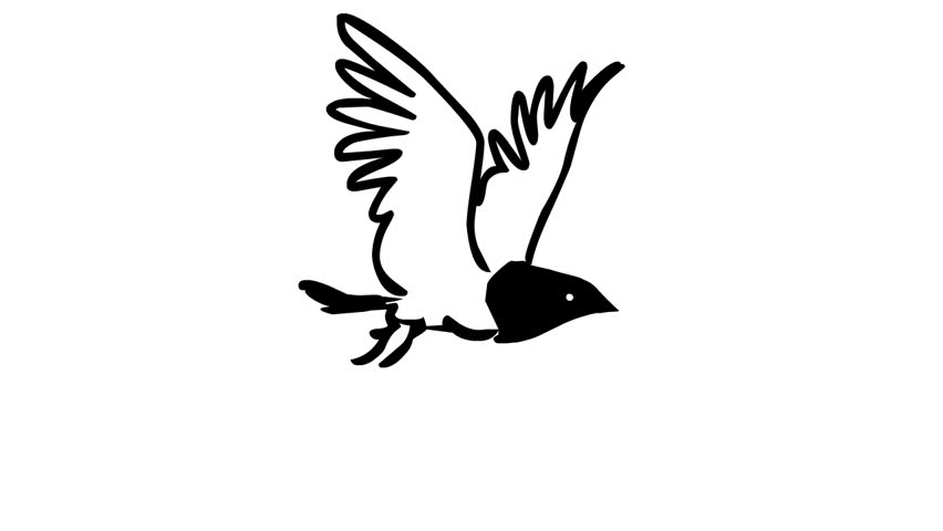 Flying Bird Loop Animation Stock Footage Video 100 Royalty Free 2362127 Shutterstock