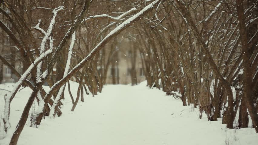 Mystical Winter Alley | Shutterstock HD Video #23625817