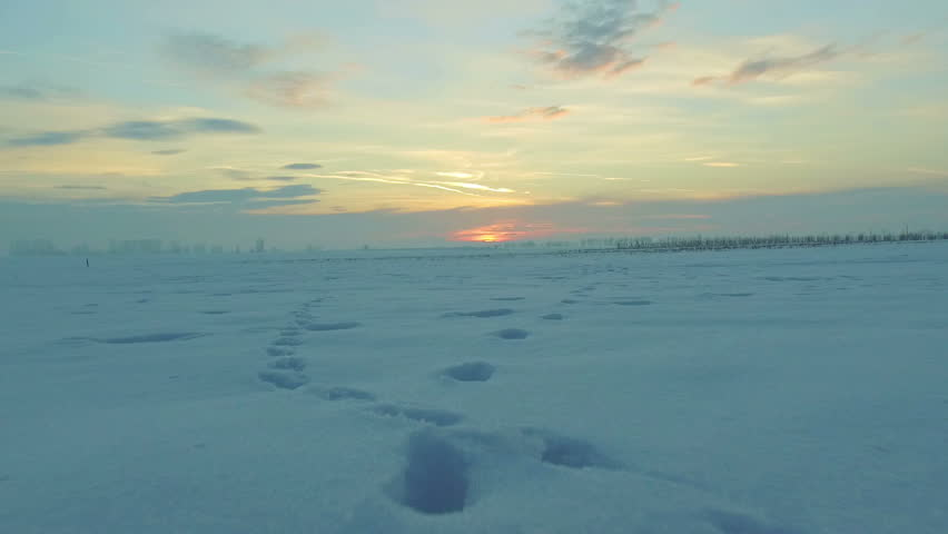 At sunset flying over a field of snow with human and animal traces in the countryside. Extremely low flight. Drone used, 30fps. | Shutterstock HD Video #23715856