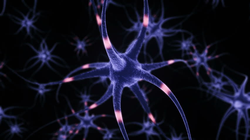 Neuron Cells, with sending informations, loop-able simulation (3d rendering) #23752480