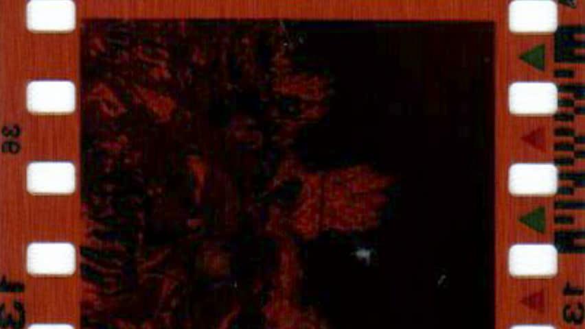 Old grunge film strip background   Shutterstock HD Video #23813494