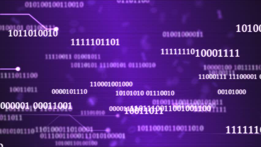 Random Binary Codes and Computer Themed Animation - Loop Purple   Shutterstock HD Video #23954737
