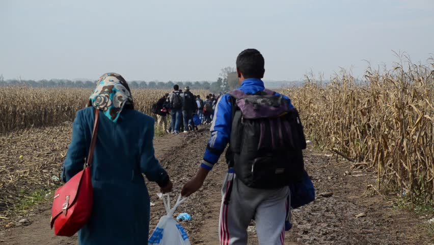 Refugees Running In Cornfield. Young migrant couple escaping from the war with plastic bag in their hands. Refugees trying to cross border in search of better life in Europe (EU).
