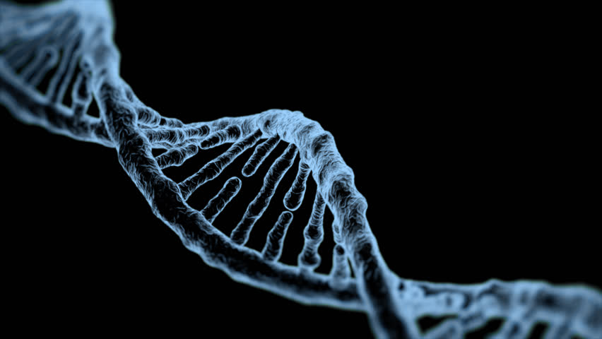DNA Double Helix rotating loop with Alpha Channel Royalty-Free Stock Footage #24254936