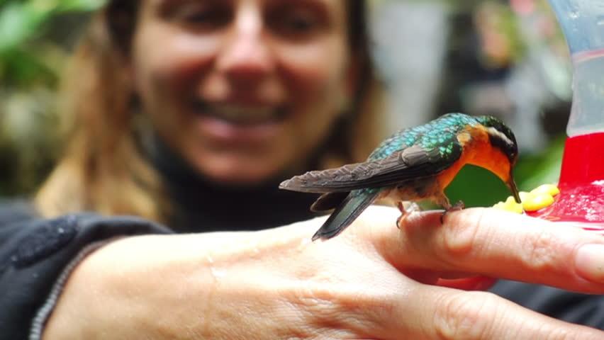 Woman holding hummingbird while it's feeding