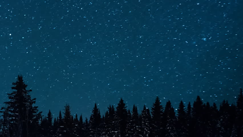 Starry sky in the background of fir trees. Moon rise | Shutterstock HD Video #24466463