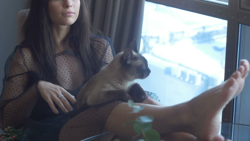 Brunette female sitting with a cat | Shutterstock HD Video #24471539
