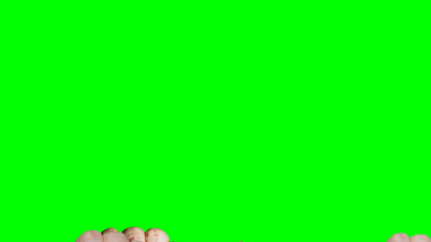 4k lot of different fists raising up in front of green screen background | Shutterstock HD Video #24723599