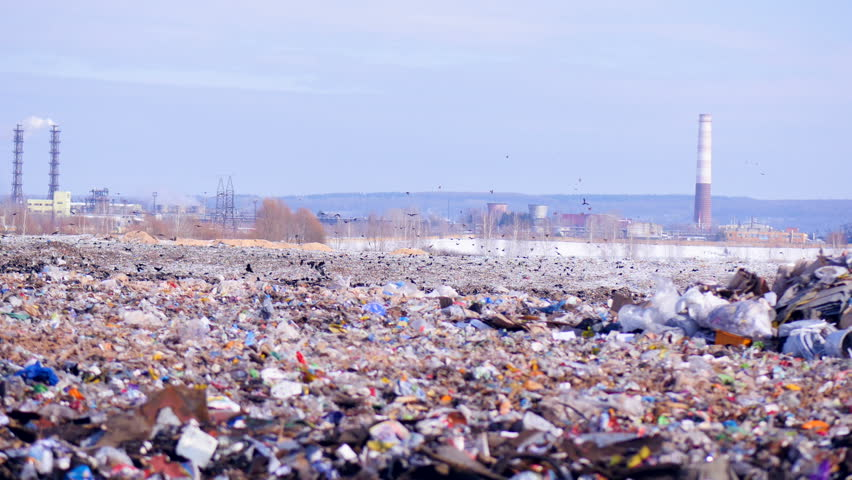 A flock of birds takes off a city dump, landill. Industrial plant on a background. | Shutterstock HD Video #24819695