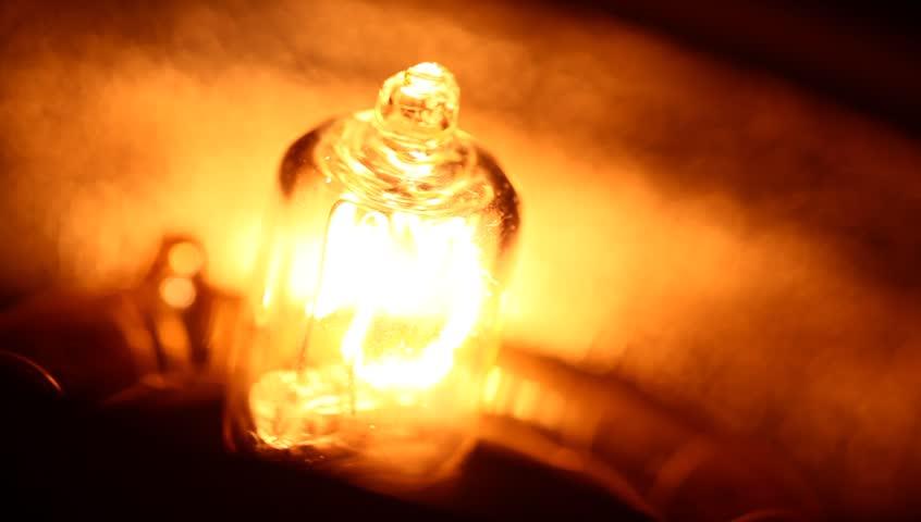 Close up of Bulb | Shutterstock HD Video #2498540