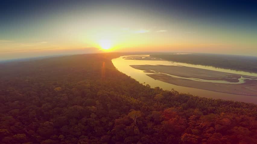 Aerial Shot Of Amazon Rainforest at Sunset | Shutterstock HD Video #25029116