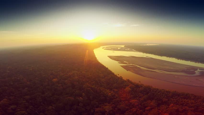 Aerial Shot Of Amazon Rainforest at Sunset | Shutterstock HD Video #25029149