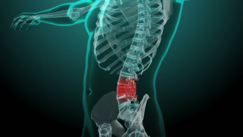 X-ray skeleton animation of lower back spine pain. Human anatomy Royalty-Free Stock Footage #25036076
