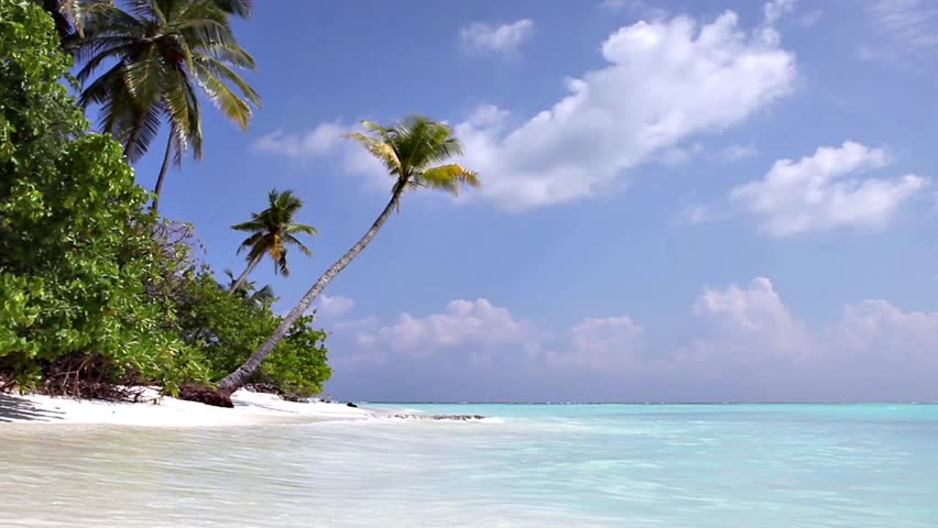 Beach at Maldives island Fulhadhoo with white sandy beach and sea and curve palm #25177979