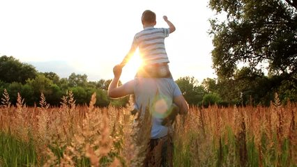 Little son sits on shoulders of daddy. Family having fun outside in beautiful meadow in sunset sunlight. Real time full hd video footage.
