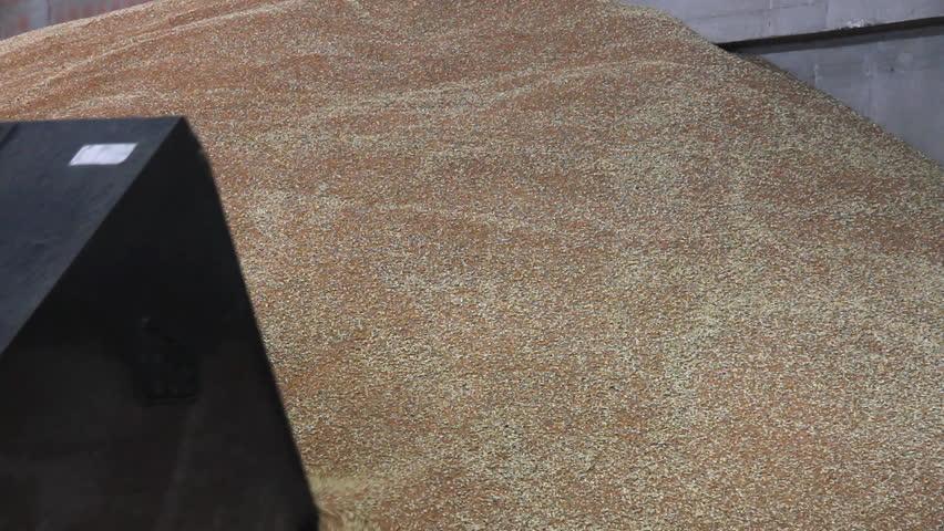 Wheat in the Silo, loader working | Shutterstock HD Video #2532299