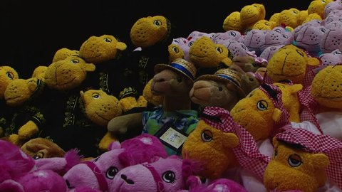 UAE - CIRCA 2008: Tilt-up on a display of stuffed toy camels for sale in a tourist souvenir shop.