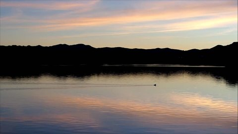 Water with ducks during a beautiful sunset