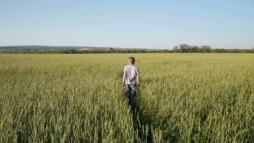 Carefree young  man walking in wheat field at summertime