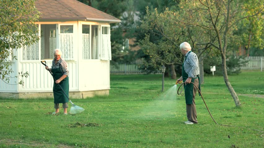Senior man with garden hose. Gardeners at work. #25695062