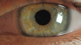Extreme close up human eye iris in 4K UHD video. Human eye iris contracting. Extreme close up. 4K UHD 2160p footage.