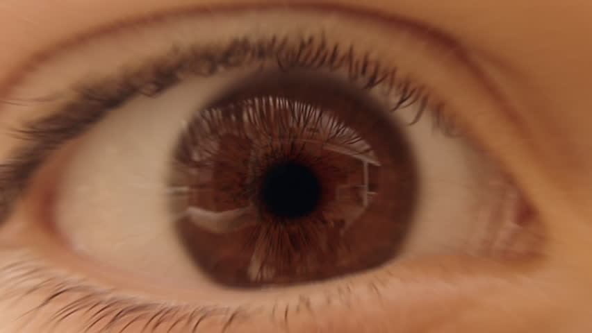 Journey through the eye - camera zooms through pupil, optic nerve and traverses neural network inside the brain. Neuron animation is loop-able from 8:00 to end. #2597618