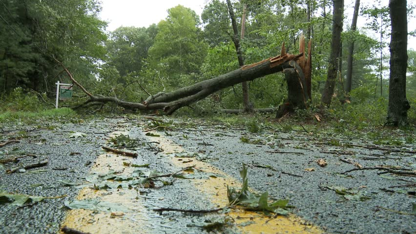 NEW ENGLAND - CIRCA SEPTEMBER 2011: Storm damage -- large shattered tree trunk blocking country road - low angle POV moving