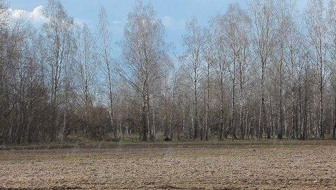 farmer field forest sky rain