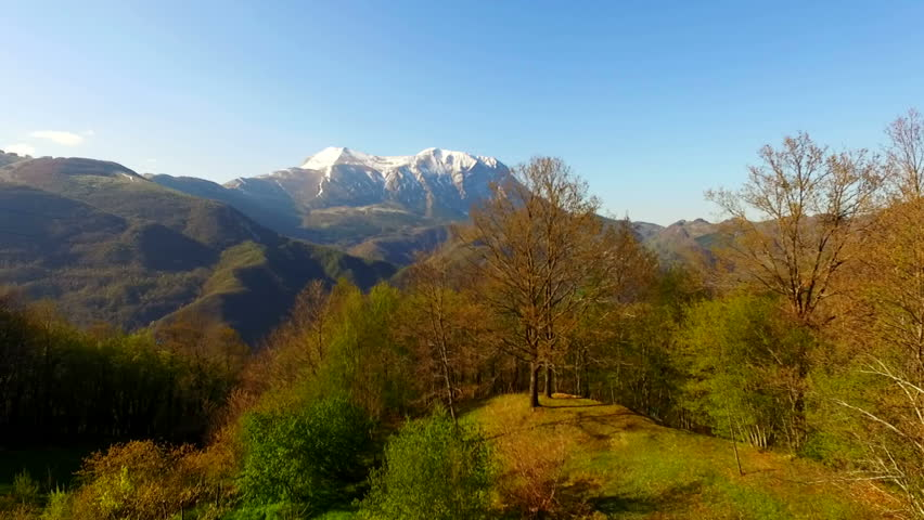Italy Apennines, mountain with snow and pine foreground, spring blue sky | Shutterstock HD Video #26299502