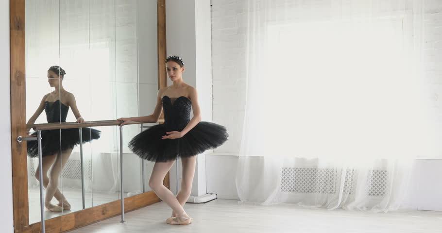 graceful girl practicing ballet in the Studio #26395148