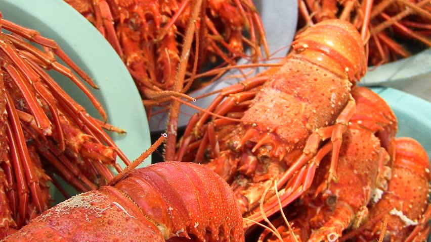 Fried prawns on the market in Maceio Alagoas, Brazil   Shutterstock HD Video #2645942