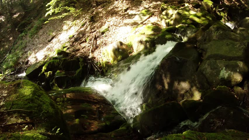 Different Views of Nature in Spring and Summer in Carpathian Mountain #26511128
