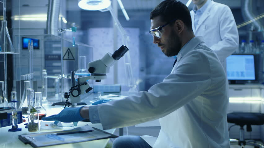 In a Modern Laboratory Assistant Brings Petri Dish to Chief Research Scientist who Starts Examining given Sample Under Microscope.  Shot on RED EPIC-W 8K Helium Cinema Camera.   Shutterstock HD Video #26643667