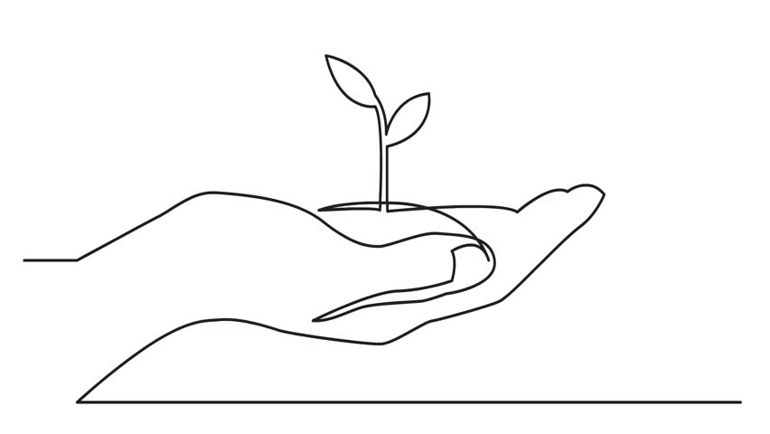 Animated continuous line drawing of hand showing growing plant