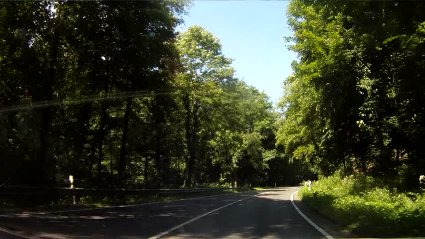 footage of a onboard camera, driving in a forest in germany,
